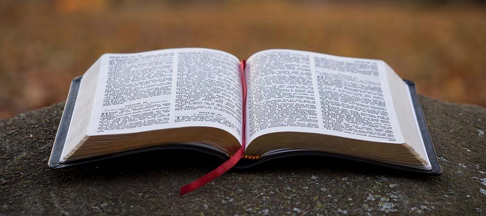 bible scene picture
